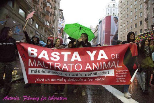 #30 Maltrato animal ¿al Código Penal?