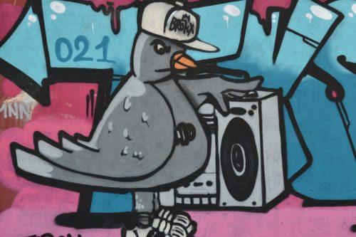 #43 Música para 50 años de lucha por la liberación animal