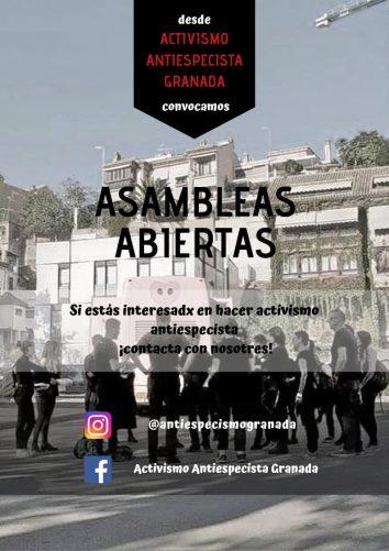 #46 Asamblea Antiespecista de Granada