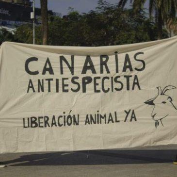 #48 Liberación Animal Gran Canaria